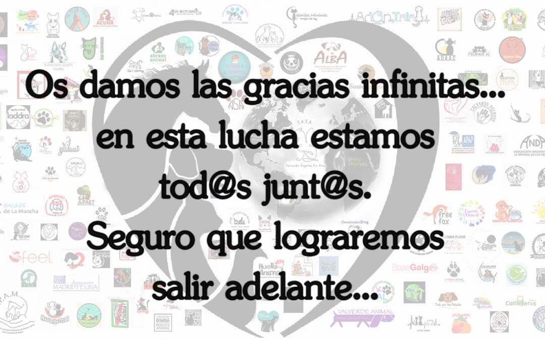 ¡RESISTIREMOS!   #yomequedoencasa #cuidamosanimales #protegemospersonas
