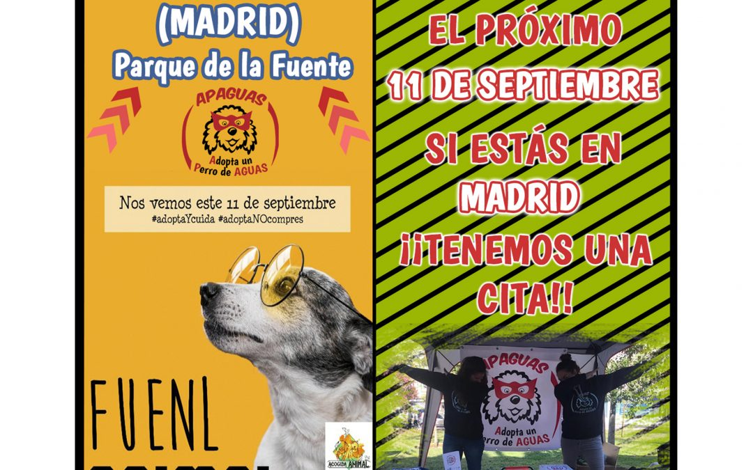 Madrid – ¡LLEGA #FUENLANIMAL 2021!